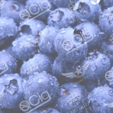 Arctic Blueberry E-Liquid